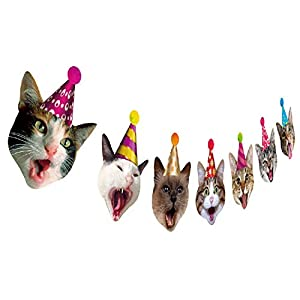 Best Epic Trends 41kLErDCRIL._SS300_ Birthday Cat Garland, Photographic Cat Faces Birthday Banner, Kitties Bday Party Bunting Decoration