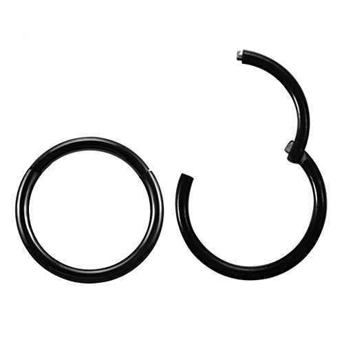 - Jusway 1 Pair Titanium 1/4 (6mm) TINY 16G (Thin) Hinged Segment Ring Hoop Earring Tragus Jewelry