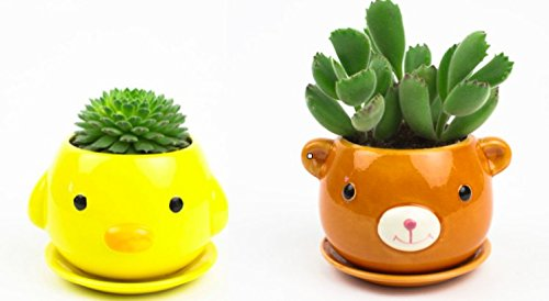 2 Set Ceramic Animal Planters Mini Cute Flower Pots Vases W Attached Saucer  Chick   Bear