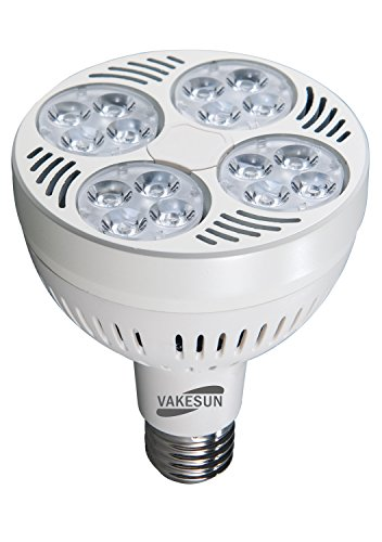 10000 K Led Light Bulbs in US - 7