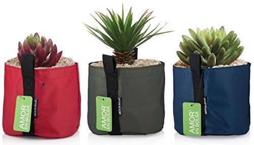 1 Gallon Succulent Planters   Set Of 3 Colors   Polyester Grow Bags With Handles   Ideal For Indoor   Outdoor Use   Fabric Flower Pots For Fresh Herbs  Succulent   Small Flower Growing
