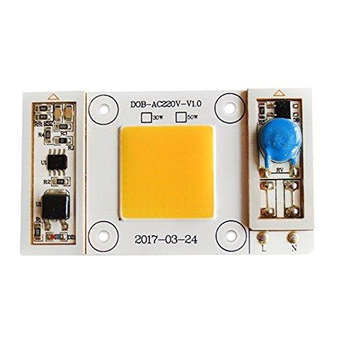 Tesfish 50W LED light Engine Warm White 80-150V COB Chip Input Integrated Smart IC Driver for Floodlight