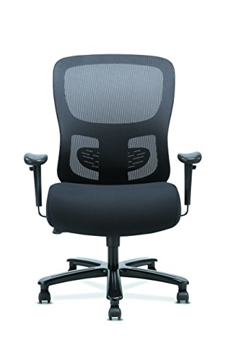 Sadie Big and Tall Office Computer Chair, Height Adjustable Arms with Adjustable Lumbar, Black HVST141
