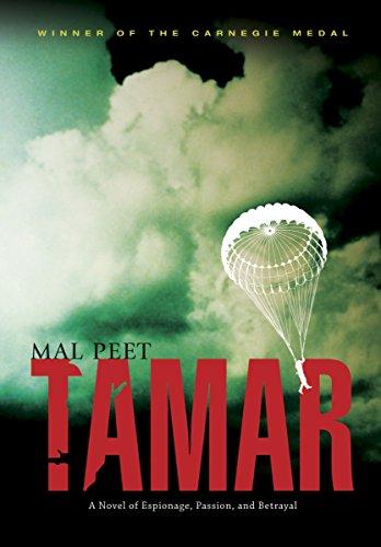 Tamar: A Novel of Espionage, Passion, and Betrayal
