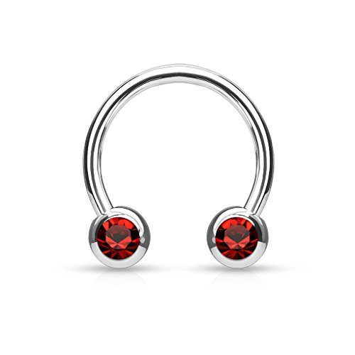 Front Facing Jewel Set Balls IP Over 316L Surgical Steel WildKlass Circular/Horseshoes for Nipple, Septum and Ear Cartilage Piercings (4mm Red)