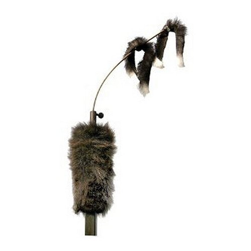 - MOJO Outdoors Critter Predator Decoy (Renewed)