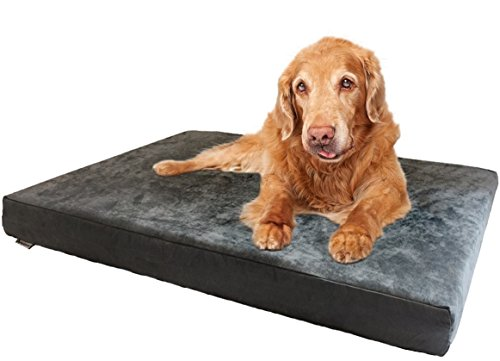 Dogbed4less XXL Orthopedic Gel Infused Cooling Memory Foam Dog Bed for Large Pet, Waterproof Liner, Micro Suede Gray Cover, 55X37X4 Inch