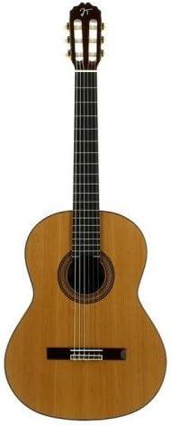 JOSE TORRES JTC-40: Amazon.es: Instrumentos musicales