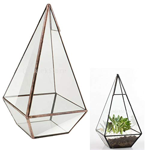 BROSCO Terrarium Geometric Glass Succulent Plants Planter Home Decoration Gift (Wedding Opal Frame)