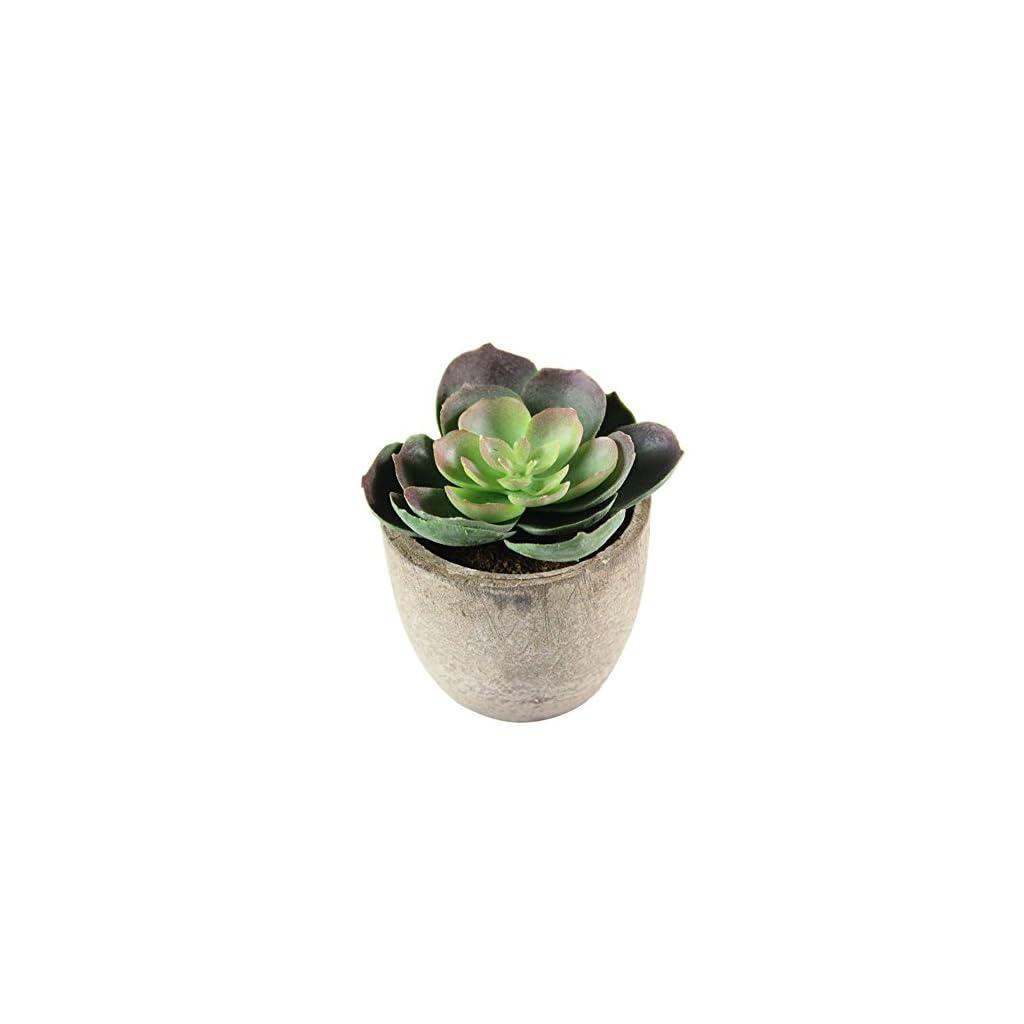 Artificial-Succulent-Plants-Faux-Succulents-Artificial-Large-Cactus-Aloe-for-Home-Indoor-Decoration