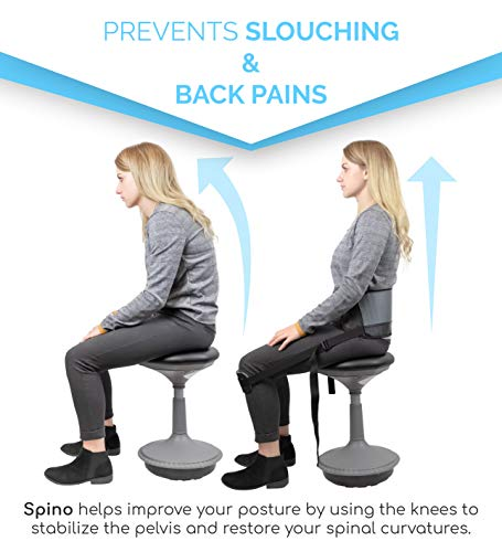 Notion Innovations Spino Standard Back Support Posture Correction and Improvement System by Spino (Image #1)