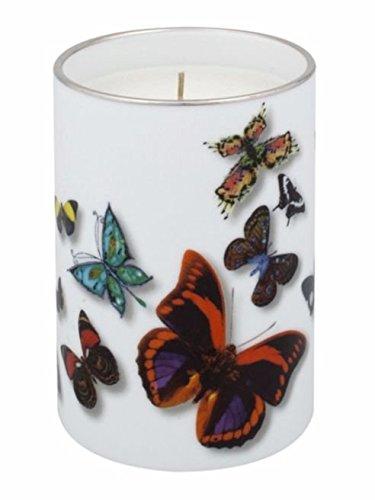 Vista Alegre Christian Lacroix Butterfly Parade Pencil Holder & Vase by