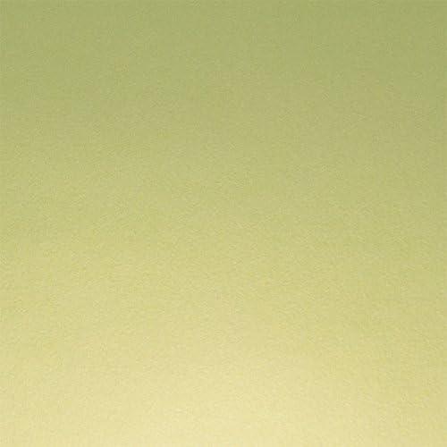 TopFlex Camiseta de textil pantalla para plotter 5 unidades DIN A4 – Metallic Lime – siser E0030: Amazon.es: Jardín