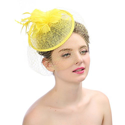 Rcbadress Women Party Fascinator Birdcage Wedding Pillbox Hat with Net Feather -