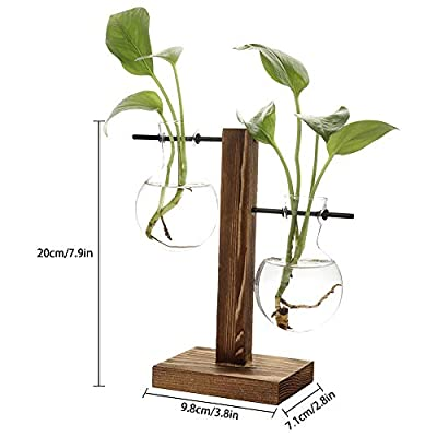 Takefuns Glass Planter Bulb Vase Desktop Hanging Glass Libra Planter Bulb Vase Hydroponics Plants Office Desk Wedding Decor with Retro Wooden Stand