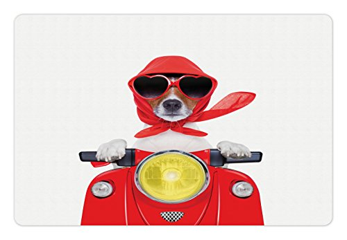 Dog Driver Pet Mats for Food and Water by Ambesonne, Stylish Canine with Scarf Sunglasses Fashion Model Riding Scooter Funny Animal, Rectangle Non-Slip Rubber Mat for Dogs and Cats, - Sunglasses Canine