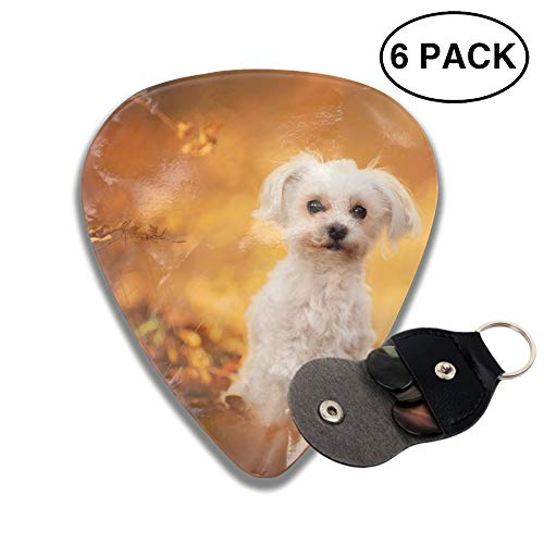 (Animal Maltese Dogs Guitar Picks Various Rock Bands Collection 0.46mm 0.71mm And 0.96mm, 6pcs)