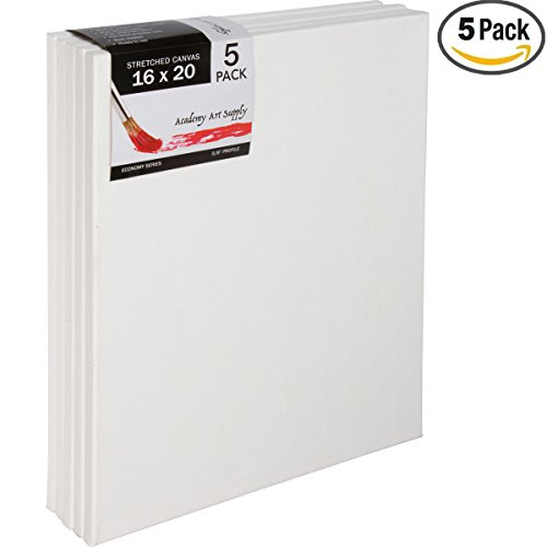 16 X 16 Canvas (16 X 20 Inch Stretched Canvas Value Pack of)