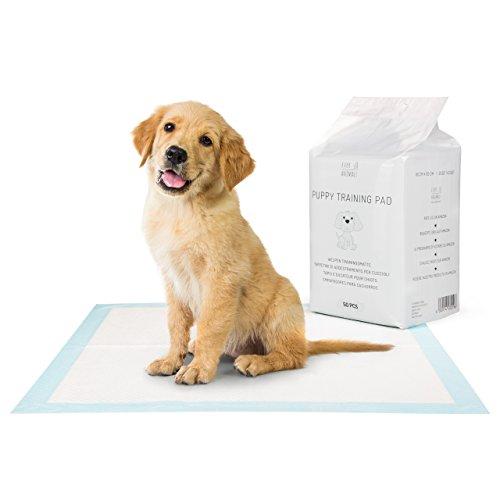 EVERANIMALS 50 Welpen Trainingsunterlagen – saugstarke Hunde-Pads, Hundeklo, Welpenunterlage, Welpentoilette für Zuhause