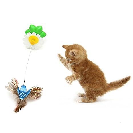 Juguetes para gatos Pájaros de baile eléctrico con colibrí 360 Rotación Animal de compañía gato bromista Juguetes color aleatorio: Amazon.es: Productos para ...