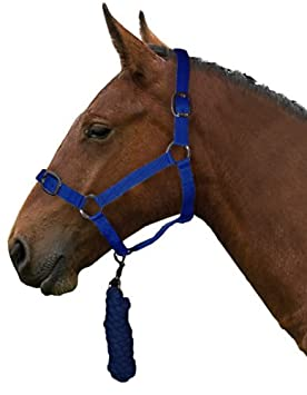 Horse Headcollar and Lead Rope Set