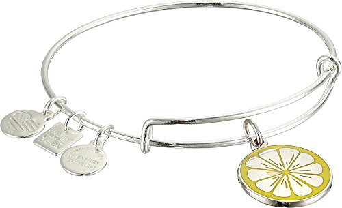 Alex and Ani Women's Charity by Design Zest for Life II Charm Bangle Shiny Silver Finish One Size