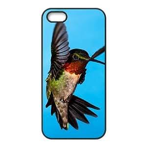iPhone 5,5S Phone Cases Black Hummingbird CKL835355