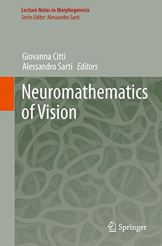 Neuromathematics of Vision (Lecture Notes in Morphogenesis)