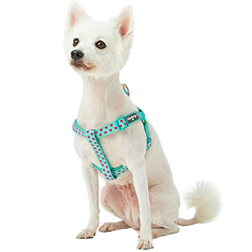 Blueberry Pet 2019 New Spring Step-in Velvety Heart Flocking Dog Harness in Minty Green, Chest Girth 20