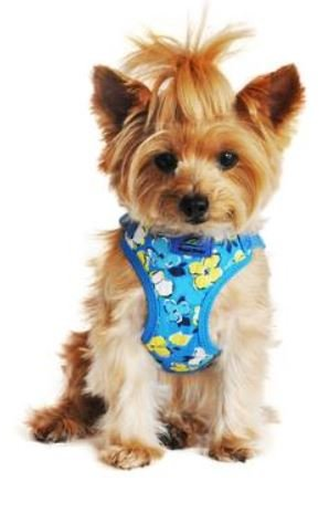 Surfer Dog Costume (Doggie Design Wrap and Snap Choke Free Dog Harness - Hawaiian Blue (S))