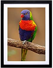 Mxtallup 12x16 Diamond Painting Frames Wood ,Display Pictures 12x16 Inch/30X40 cm with Mat or 14x18 Inch /35X45 cm Without Mat, Diamond Art Picture Frame Black (TK004)