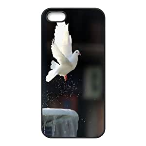 High Quality Phone Case For Apple Iphone 5 5S Cases -White dove-LiuWeiTing Store Case 15