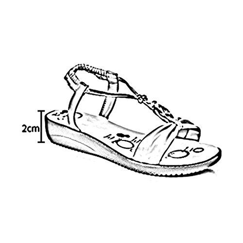 PENGFEI Chanclas de playa para mujer Sandalias de verano Zapatillas de verano Estudiante Femenino Ocio Antideslizante Cómodo y transpirable Plano con sandalias Fondo suave Cómodo y transpirable ( Colo Rojo
