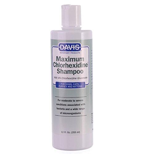 Davis Maximum Chlorhexidine Pet Shampoo, 12-Ounce by Davis