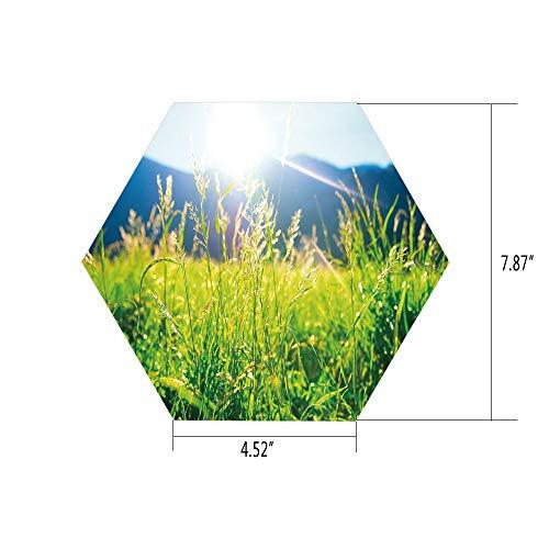 iPrint Hexagon Wall Sticker,Mural Decal,Nature,Pastoral Field Alpine Meadow Mountain Valley Fresh Summer Rural Landscape,Lime Green Light Blue,for Home Decor 4.52x7.87 10 Pcs/Set