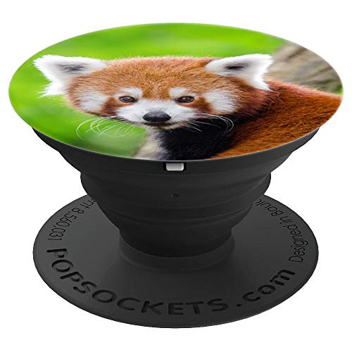 Cute Red Panda Design Gift Idea - PopSockets Grip and Stand for Phones and Tablets