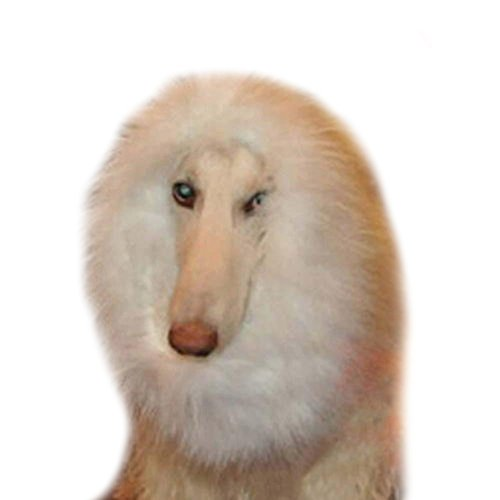 [eBoTrade Pet Large Dog Costume Lion Mane Wig (White)] (Iron Man Cat Costume)