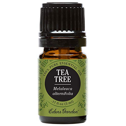 Edens Garden Tea Tree 5 ml 100% Pure Undiluted Therapeutic Grade Essential Oil GC/MS Tested