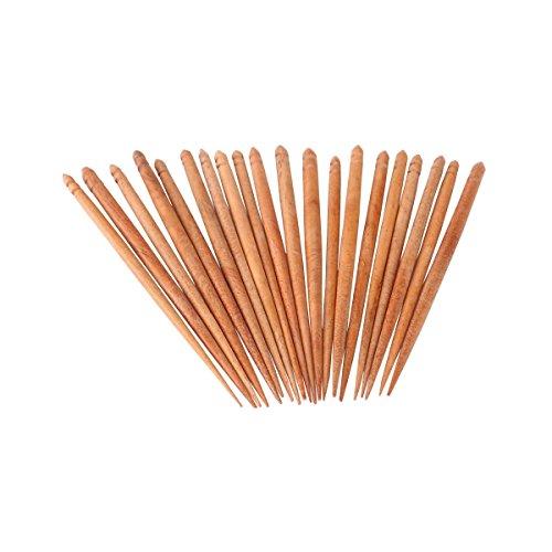 HealthAndYoga(TM) Handcrafted Neem Toothpicks - Set of ()