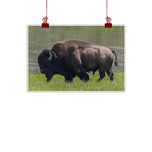 - duommhome Abstract Painting Medium Shot of American Bison Decorative Painted Sofa Background Wall 35