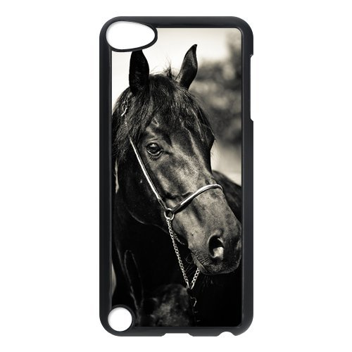[Love Black Horse Best Durable Case Cover for iPod Touch 5th Generation] (Funny Uniform Costumes)