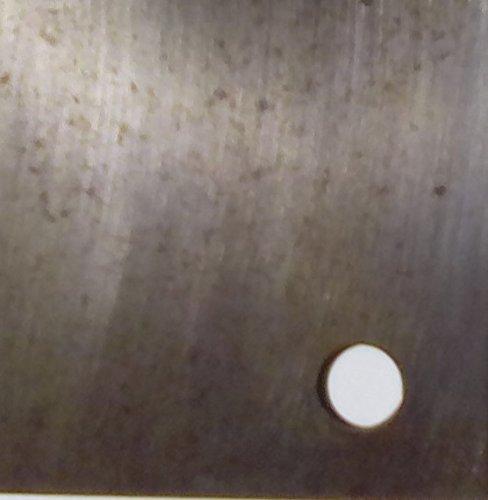 Brass Traditions 621-OPT-GM Medium Onion Wall Lantern Optic Globe, Gun Metal Finish Optic Globe Onion Wall Lantern