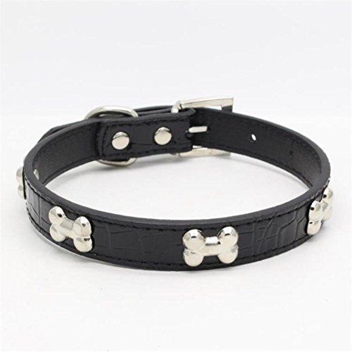 Livoty Exquisite Adjustable Buckle Metal Bone Dog Puppy Pet Collars (M, Black)