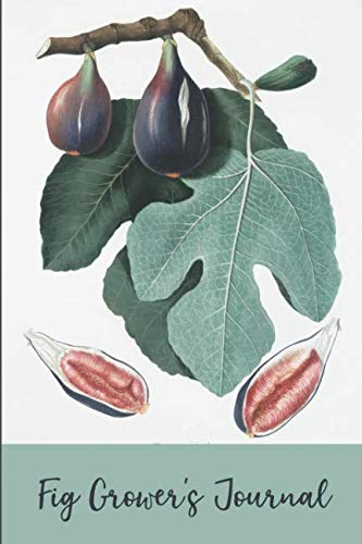 Fig Grower's Journal: College Ruled Lined Notebook for your Fig Growing Activities (Tree Farm Farmer Christmas Brown)