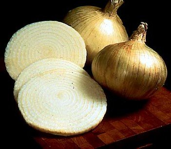 Sweet Granex Onion 80 Seeds as Grown in Maui Hawaii