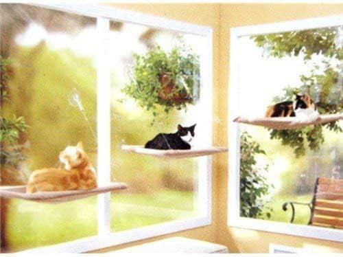 PETPAWJOY Cama para gatos, percha para ventana de gato Asiento de ventana Ventosas Hamaca para gato que ahorra espacio Asiento para descanso de mascotas Estantes para gatos de seguridad - Proporciona un baño de sol de 360 ° para gatos con un peso de hasta 30 lb, bronceado 6