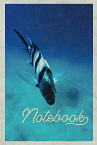 - Notebook: Importance of Marine Life convenient Composition Book Journal Diary for Men, Women, Teen & Kids Vintage Retro Design Exotic Fish Store Owner
