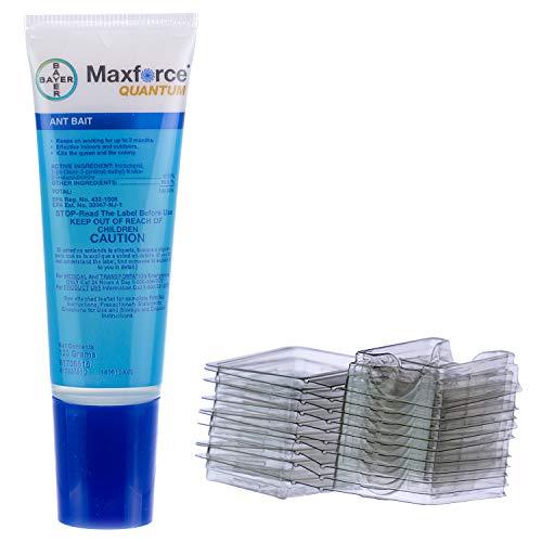 Maxforce Quantum 0.03% Imidacloprid Ant Control Liquid Bait with 10 stations, 120 Gram Bottle