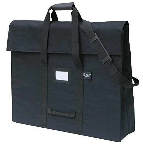 (X-Port Professional Expandable Art Portfolio Case (20