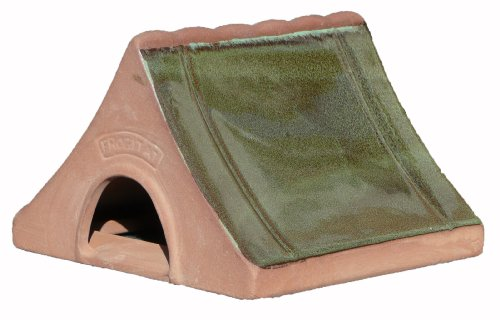 Wildlife World Ceramic Frog and Toad Home